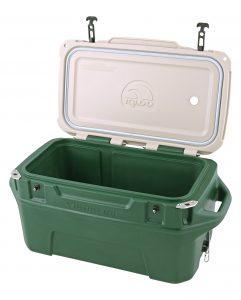 gen-img-50-green-2